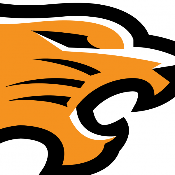 Tiger head logo design - photo#48