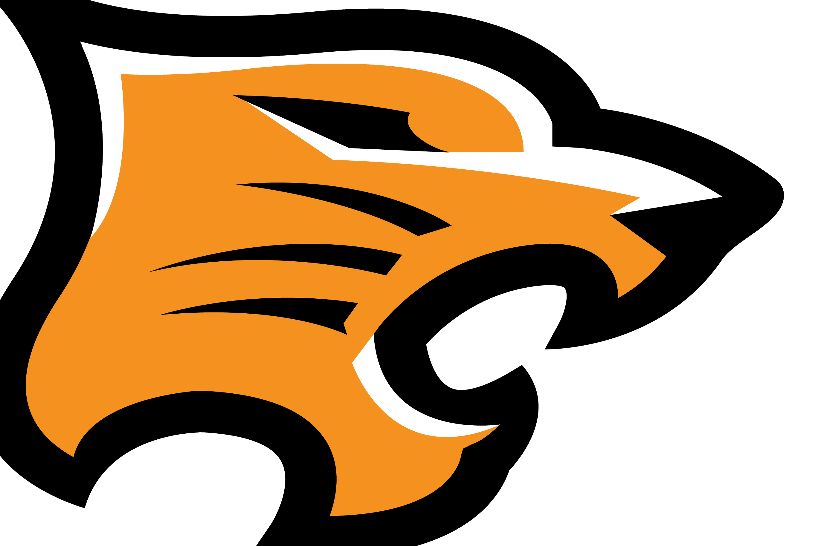 Tiger head logo design - photo#43