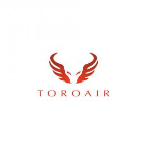 toroair2