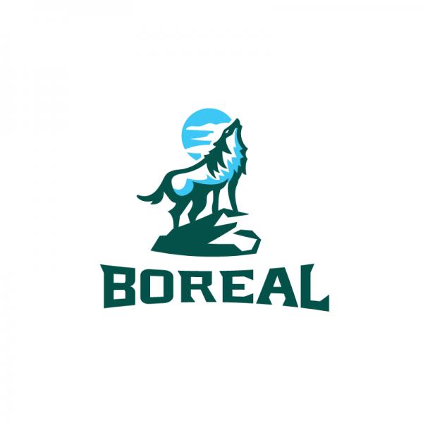 Boreal Dog Food Where To Buy