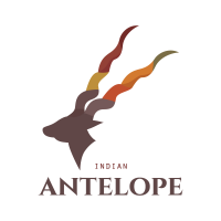 indian-antelope