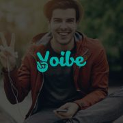 VoibeLogo