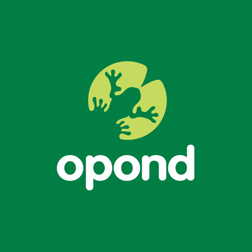 OnPondu2014Lily Pad Frog Logo Design : Logo Cowboy