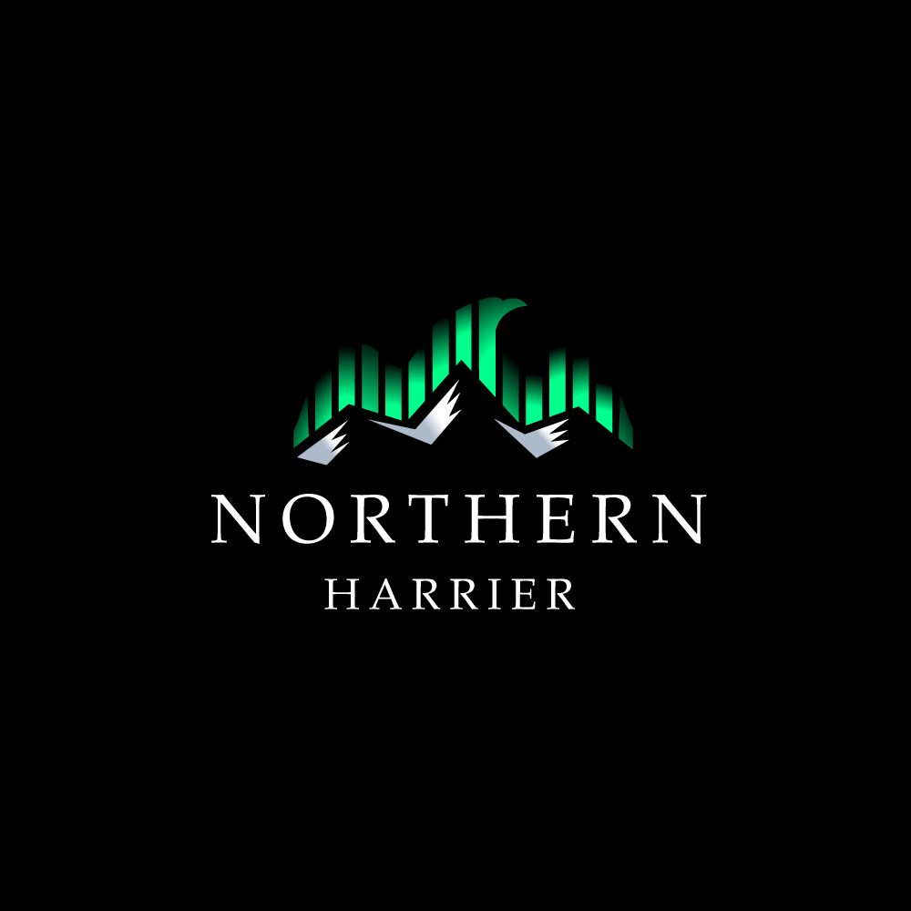 American Eagle Credit Card Sign In >> SOLD: Northern Harrier Aurora Borealis Lights Logo – Logo Cowboy